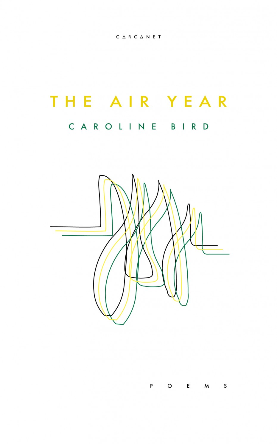 The Air Year Cover